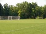 Capelli Field 2